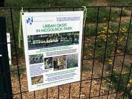 urban oasis in monsignor mcgolrick park