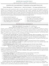 Sample Executive Summary Resume Executive Summary Resume Samples
