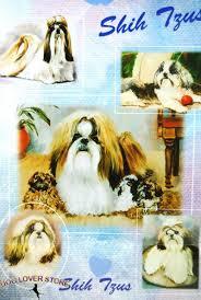 shih tzu dog gift present wrap 181027073822