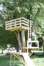 simple treehouse. LOTS And Lots Of Tree House Ideas. Simple Treehouse