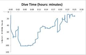 Divers Alert Network Omitted Predive Buoyancy Check Leads