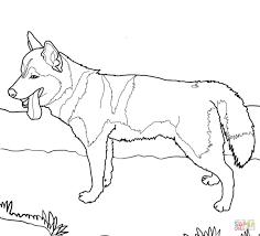 Siberian Husky Dog | Super Coloring | dog patterns | Pinterest ...