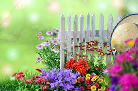 Summer Garden Wallpapers - Top Free ...