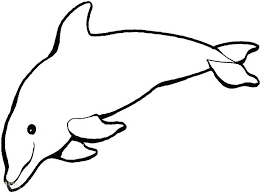 Coloring Pages Draw A Dolphin Coloring Pages Cute Dolphin Coloring