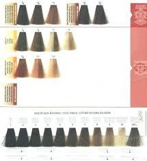 Matrix Socolor Grey Coverage Color Chart Matrix Socolor Hair Chart Matrix Shade Card India Matrix