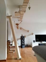 overhead cat playground room goldtatze 3