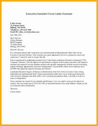 Gallery Of Resume Summary Examples For It Professionals Best