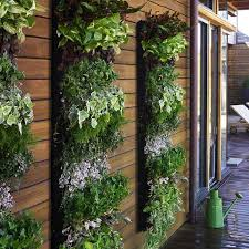 Small Picture Best Of Vertical Vegetable Garden Design Ideas Living Wall Planter