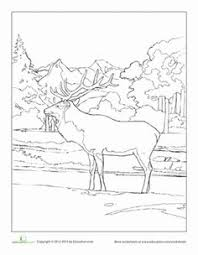 14a68aa8fc10a778d715065ba8b2ffde colouring sheets coloring pages bucket coloring page coloring pages, geography and children on dbt worksheets