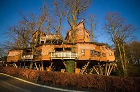 Ministeru0027s Tree House  50 Photos U0026 24 Reviews  Arts Largest Treehouse In America
