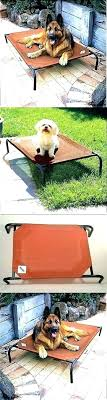 outdoor raised dog bed – justenoughforme.info