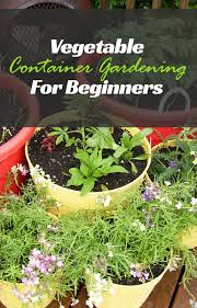 container gardening for beginners. Summary. Vegetable Container Gardening For Beginners: Beginners