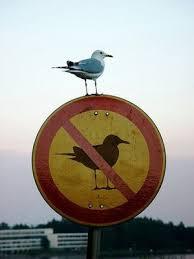 De verdad que las normas están para saltárselas? | A partir de los 50