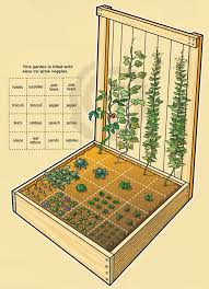 Small Picture Organic Gardening Archives Organic Thoughts from an OrganicBabyDaddy