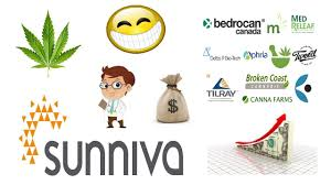 Will This Cannabis Stock Be The Next Aurora Cannabis We Take A Look At Sunniva