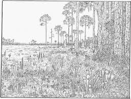 Small Picture Very Detailed Coloring Pages Az Ridrljbt adult
