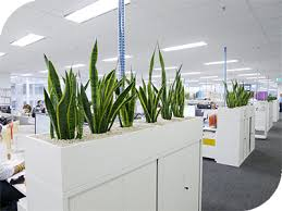 office planter. Office Planter F