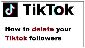 TikTokPalace | Can You Remove Tik Tok Followers - A Complete Guide On Tiktok  Settings