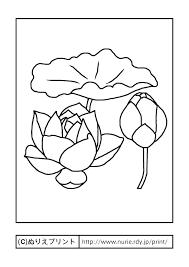 ハス主線黒夏の花無料塗り絵イラストぬりえプリント