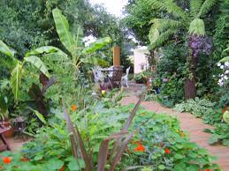 Small Picture Beautiful Tropical Garden Ideas Uk Inside Inspiration
