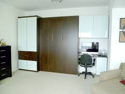 Modern Murphy Bed Canada In Bed SurriPuinet
