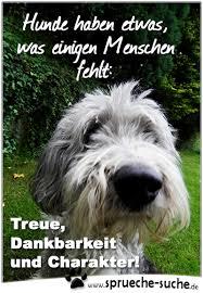 Hunde Treue Dankbarkeit Und Charakter Sprüche Zum Nachdenken