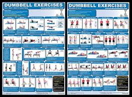 Dumbbell Exercises For Men Chart Alternatives To These Exercise Posters Clubsi