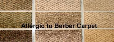Everything about Allergy free Berber Carpets The Flooring Lady