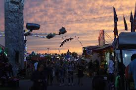 Its Medina County Fair Time Special Section