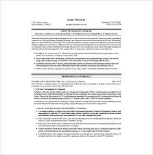 Resume Sample Doc Mesmerizing Resume Samples Doc Download Beautiful Cto Resume Sample Chief