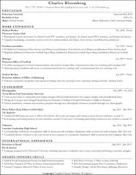 Professional Resume Critique Wonderful Monster Resume Writing Service