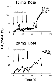 Vyvanse Peak Chart Duration Of Detectable Methamphetamine And Amphetamine