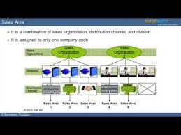 Sap Sales And Distribution Enterprise Structure What Is Sap Sap Video Tutorial