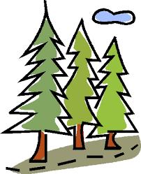 Znalezione obrazy dla zapytania gify lasu