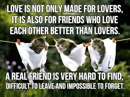 Beautiful Quotes About Love And Friendship Best Of 24 Most Beautiful Inspirational Friendship Quotes Inspiring