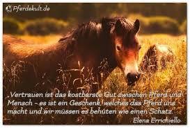Ein Sehr Schöner Spruch Johanna Gottesleben Pferdetherapie