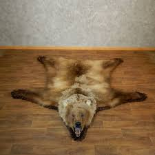 grizzly bear taxidermy rug mount for 18209 the taxidermy
