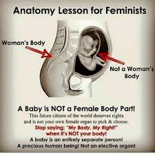 best abortion is murder images pro life choose  anatomy lesson for feminists liberal abortion supporters