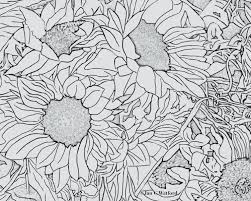 Small Picture Sunflowers Adult Coloring Page Printable Digital Download