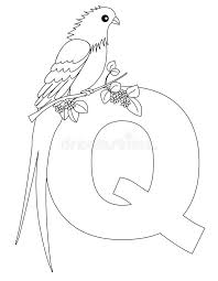 quetzal animal coloring pages