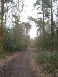 Limpsfield Chart File The Greensand Way In Limpsfield Chart Geograph Org Uk