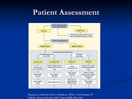 Ppt Assessment Of The Patient Powerpoint Presentation