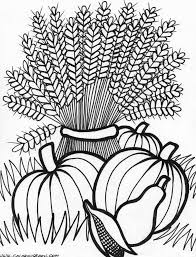 Thanksgiving Wheat Coloring Page