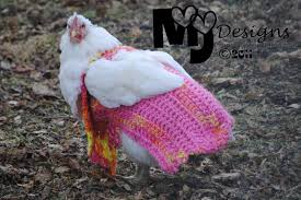 Chicken Sweater Pattern Delectable Adventures In Everyday Life Chicken Sweaters FREE Pattern For