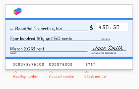 Everything You Ever Wanted To Know About Writing A Check But Were