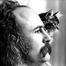 If I Could Only Remember My Name by David Crosby free ringtones for Android  & iPhone phones | Melofania