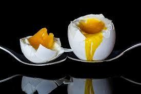Jedno Vejce Na Snídani Zvyšuje Denní Výkonnost Navíc Snižuje