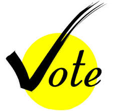 Image result for right to vote in india