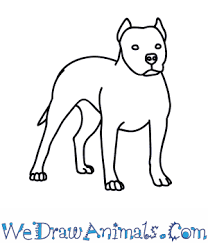 pitbull dog face drawing. Plain Drawing For Pitbull Dog Face Drawing L