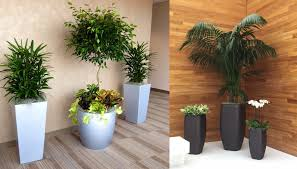 office greenery. Office Greenery E
